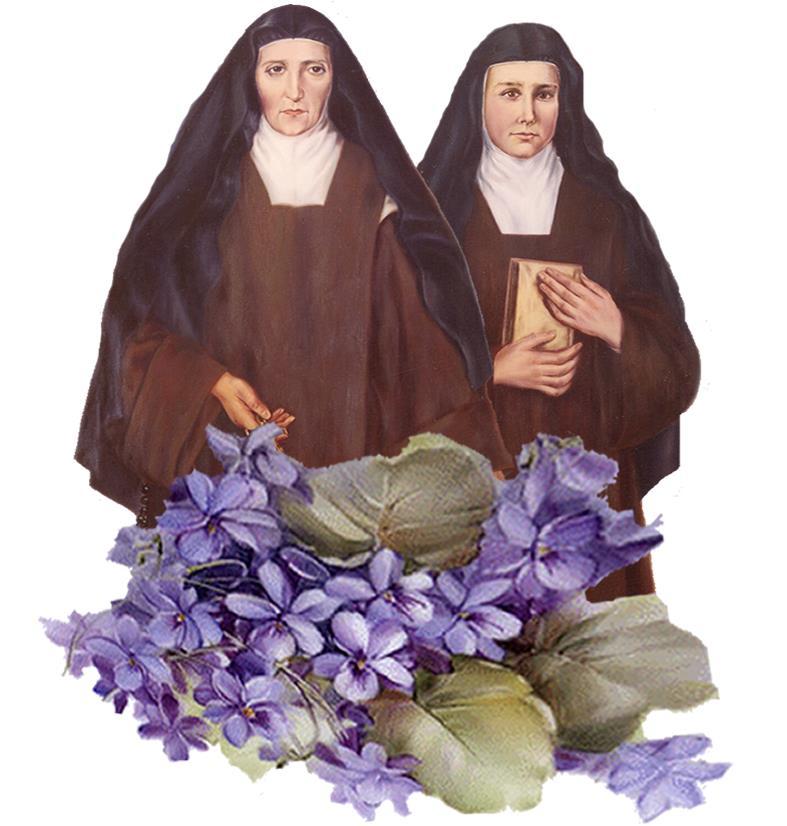 madres y violetas